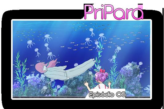 PRIPARA05